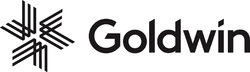 Logo Goldwin Europe AG